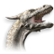 Drachengarde